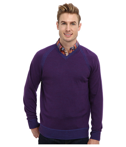 Robert Graham - The Cottage L/S V-Neck Knit Sweater (Blackberry) Men's Sweater