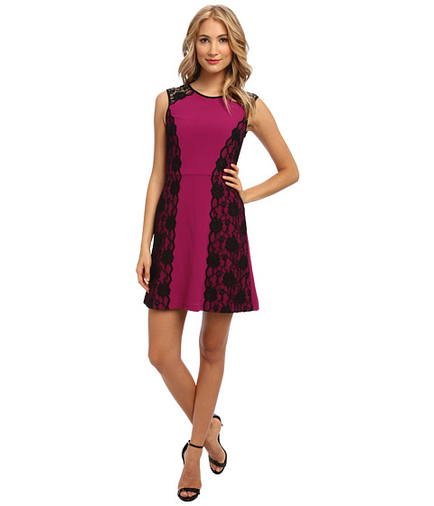 ABS Allen Schwartz - Stretch Crepe Fit and Flare Dress with Scallop Lace (Magenta) Women's Dress