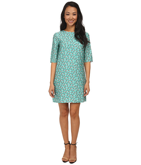 Brigitte Bailey - Lola Shift Dress (Green Cherries) Women's Dress