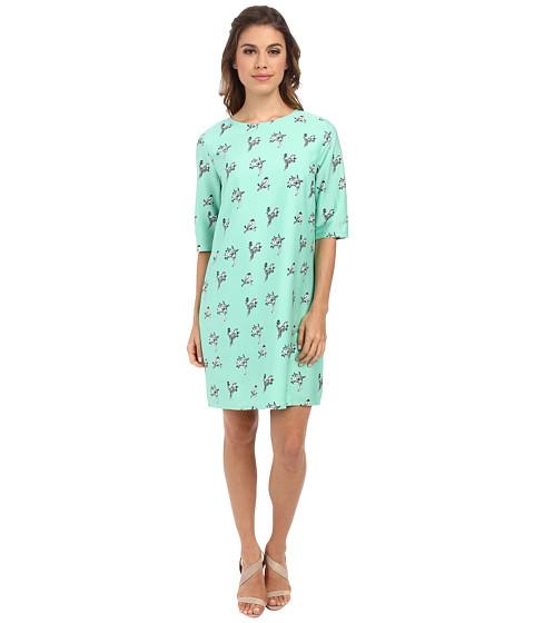 Brigitte Bailey - Lola Shift Dress (Green Birdie) Women
