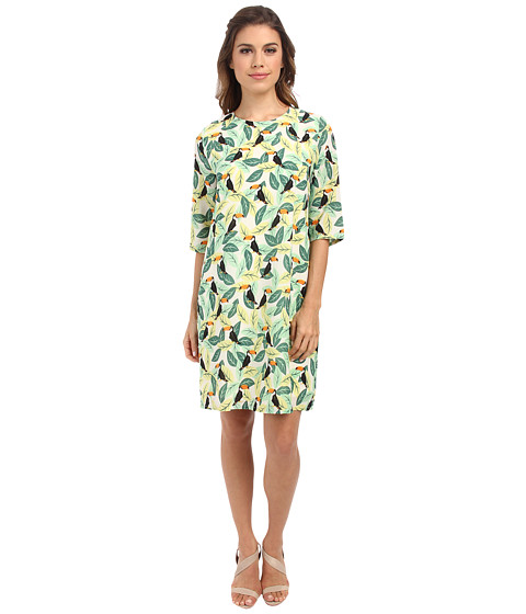 Brigitte Bailey - Lola Shift Dress (Green Toucan Leaves) Women's Dress