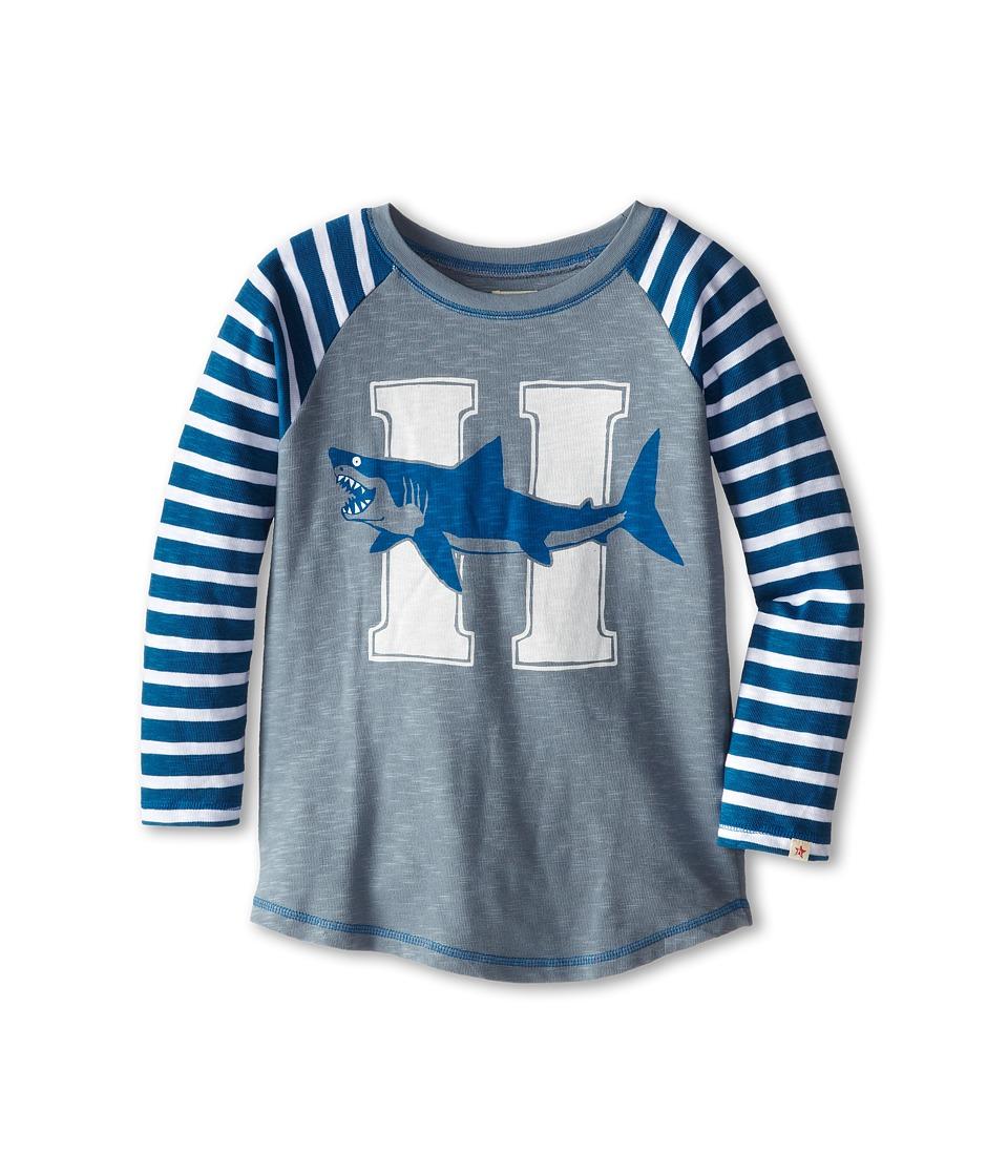 Hatley Kids - Sharks Raglan Tee (Toddler/Little Kids/Big Kids) (Blue) Boy's T Shirt