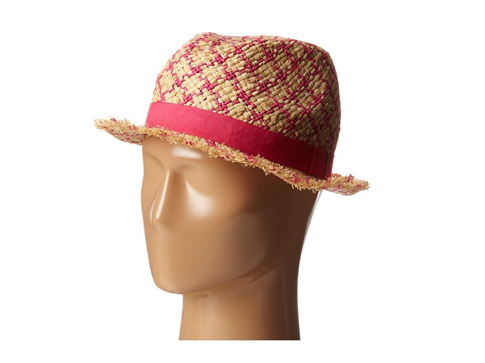 BCBGMAXAZRIA - Checked Fedora Hat (Fuchsia) Fedora Hats