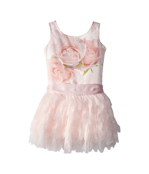 Biscotti - A Rose Is A Rose Ruffles Dress (Little Kids) (Pink) Girl's Dress