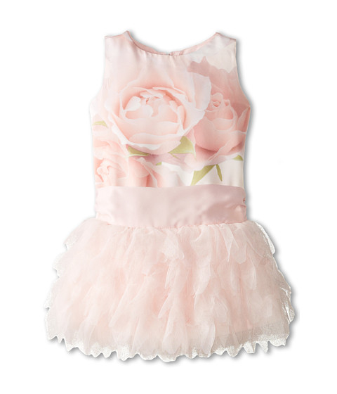 Biscotti - A Rose Is A Rose Ruffles Dress (Infant) (Pink) Girl