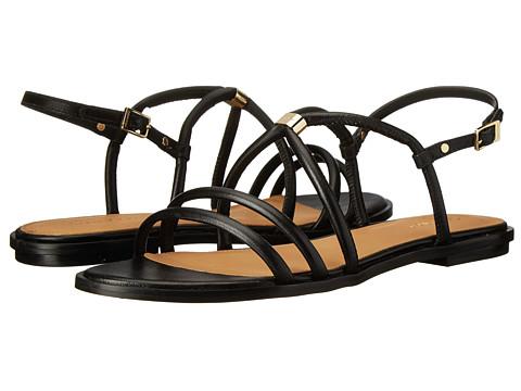 Calvin Klein - Udela (Black Leather) Women