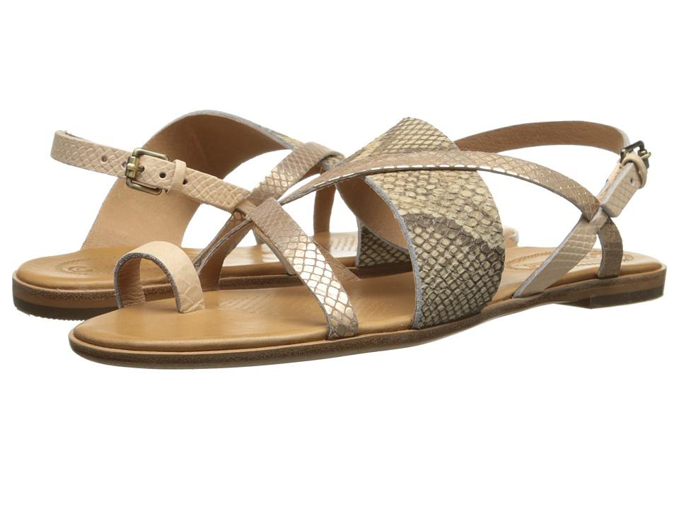 Corso Como - Carnival (Platinum/Blush/Vintage Snake) Women's Sandals