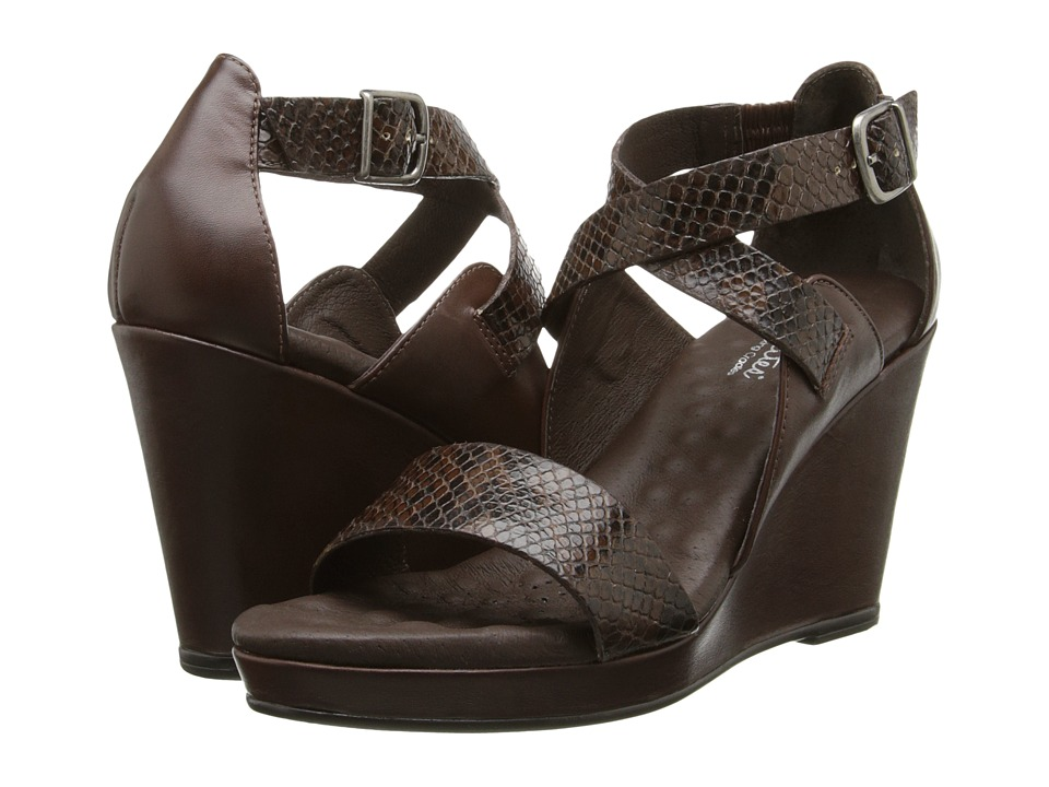 Walking Cradles - Karson (Brown/Brown/Black Snake Print) Women
