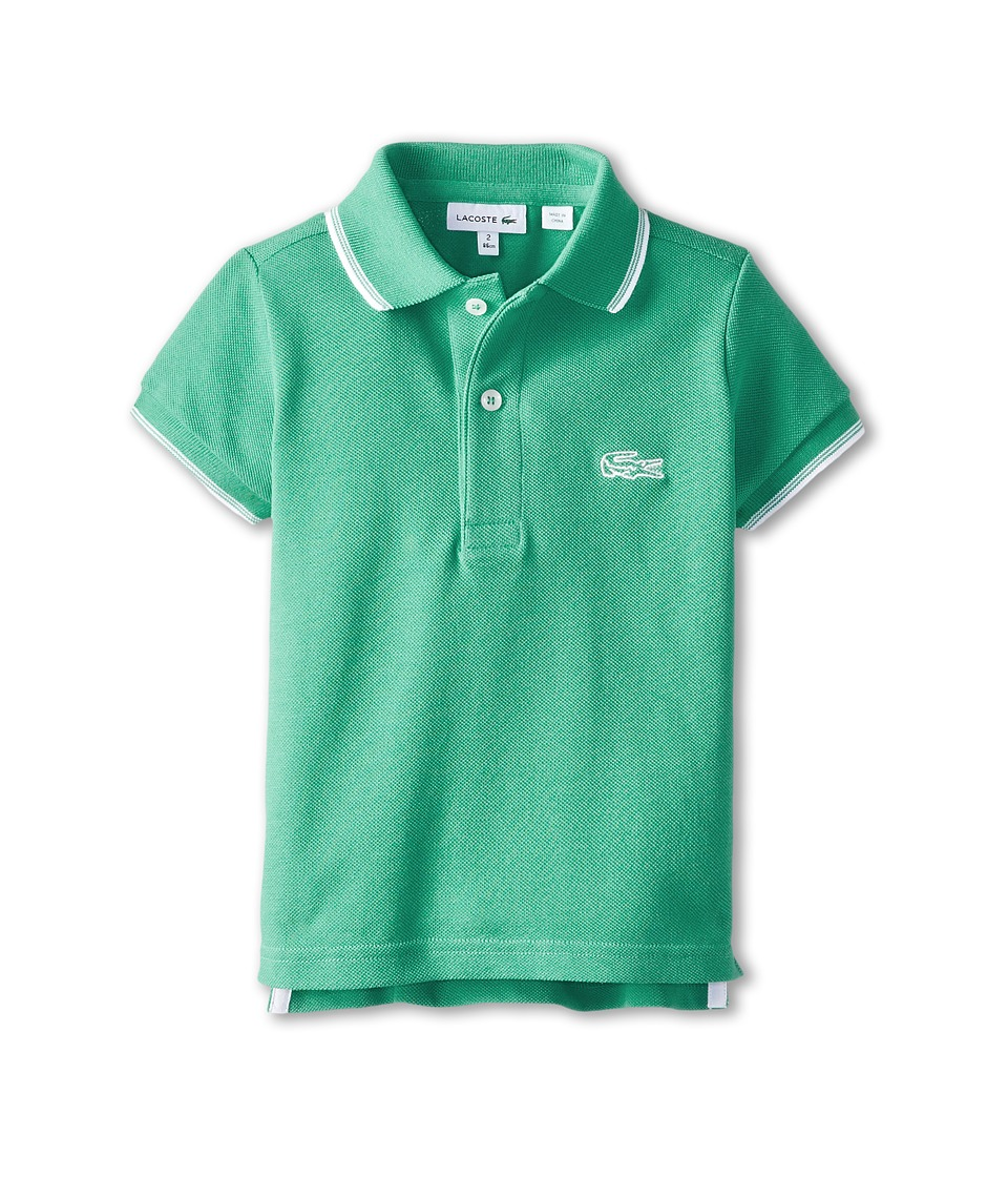 Lacoste Kids - S/S Pique Polo w/ Contrast Tipping (Toddler/Little Kids/Big Kids) (Dragon/White) Boy's Short Sleeve Pullover
