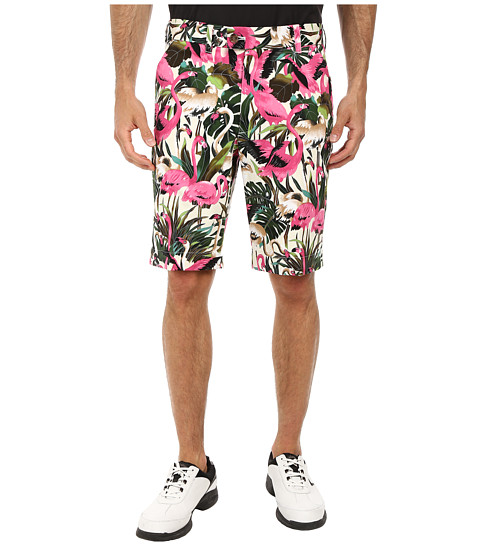 Loudmouth Golf - Vintage Pink Flamingos Shorts (White) Men's Shorts
