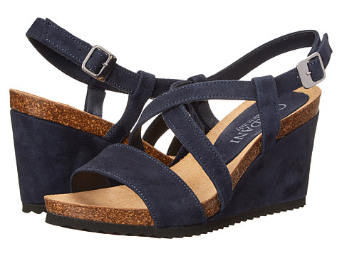 Cordani - Atwell (Navy Suede) Women's Wedge Shoes