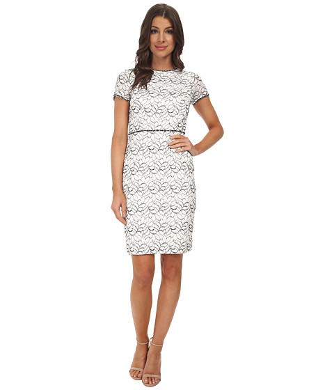 Adrianna Papell - Embellished Ornate Lace Sheath (Ivory/Black) Women