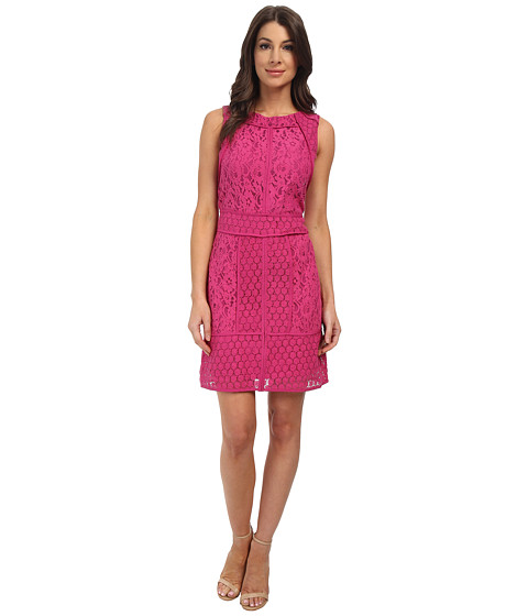 Adrianna Papell - Lace Combo A-Line Dress (Peony) Women's Dress
