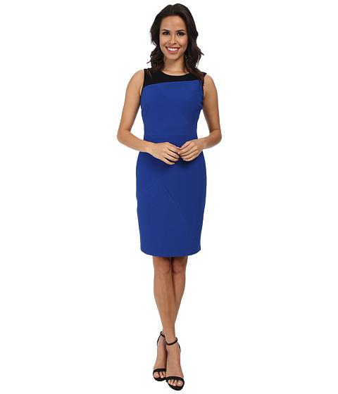 Adrianna Papell - Scoop Neck Sleeveless Dress (Navy/Black) Women's Dress