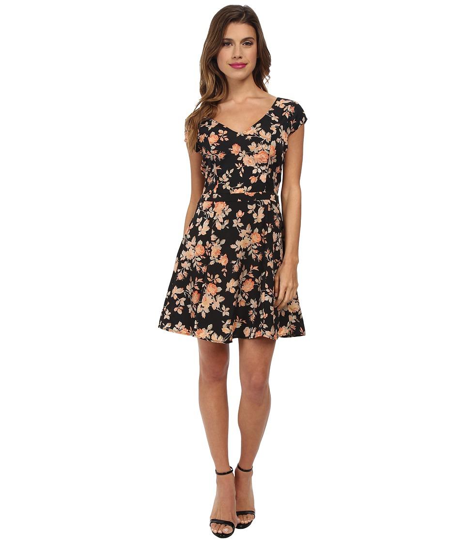 Jack by BB Dakota - Chester Vintage Rose Dress (Black) Women's Dress