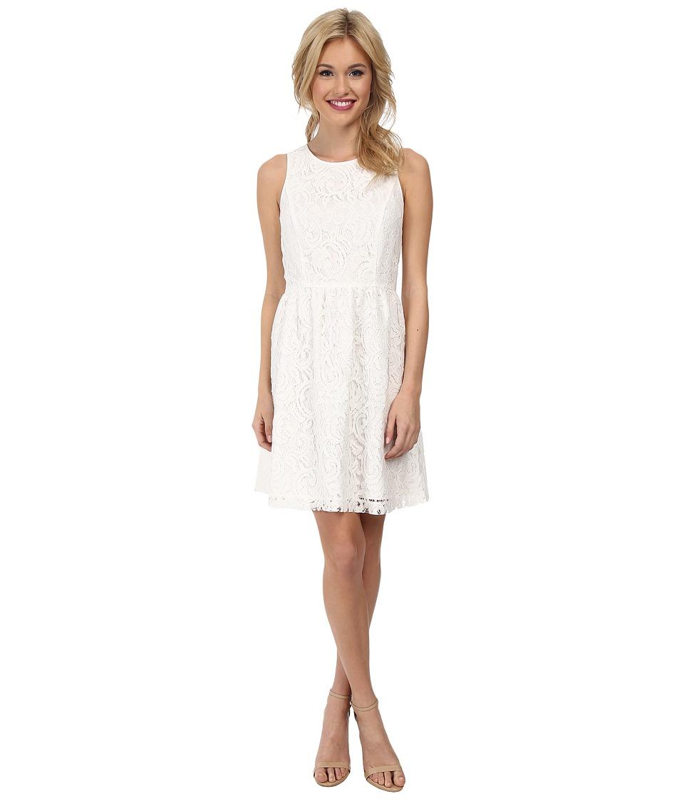 kensie - Luxurious Lace Dress KS2K7421 (Dove) Women's Dress