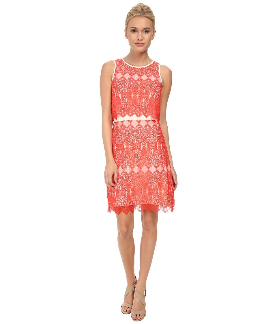 kensie - Dainty Lace Dress KS3K7465 (Red Pop Combo) Women