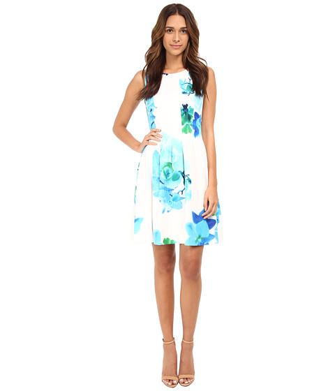 Calvin Klein - Printed Scuba Dress CD5M4A6U (Manganese Multi) Women's Dress