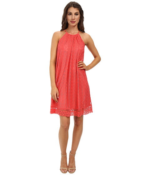 Maggy London - Oval Stripe Lace Trapeze Dress (Guava) Women