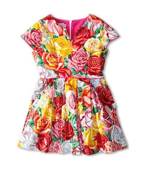 fiveloaves twofish - Full of Roses Dress (Little Kids/Big Kids) (Floral) Girl
