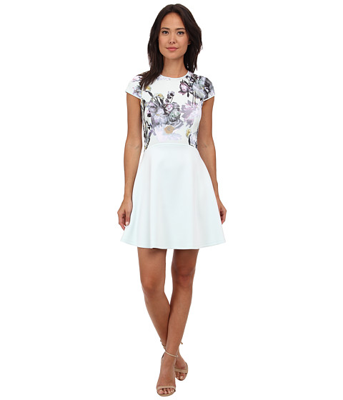Ted Baker - Faythe Torchlit Floral Skater Dress (Pale Green) Women's Dress