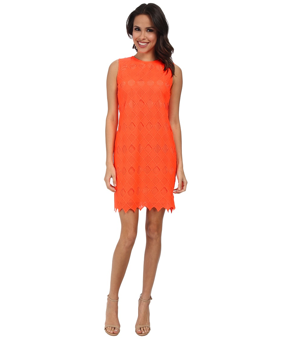 Donna Morgan - Sleeveless Chemical Lace Shift Dress (Goji) Women's Dress