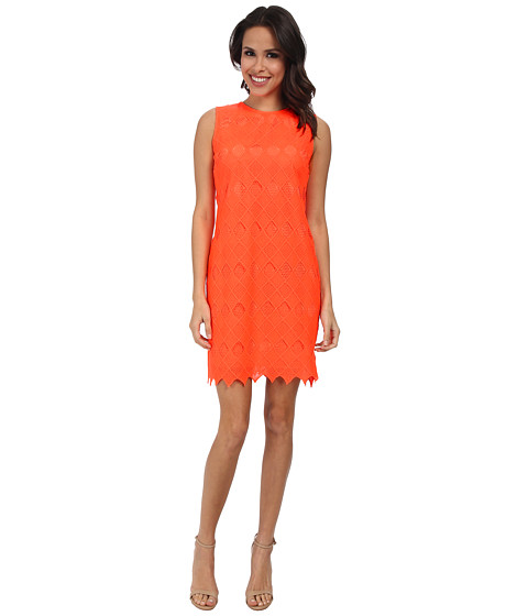 Donna Morgan - Sleeveless Chemical Lace Shift Dress (Goji) Women