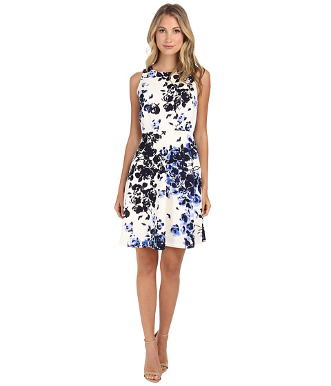 Donna Morgan - Sleeveless Scuba Floral Print (Iceberg Multi) Women