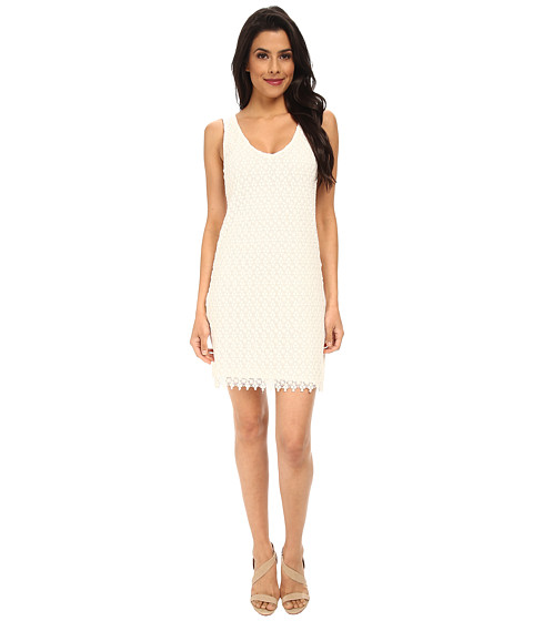 Velvet by Graham & Spencer - Flora Lace Dress (Cream) Women