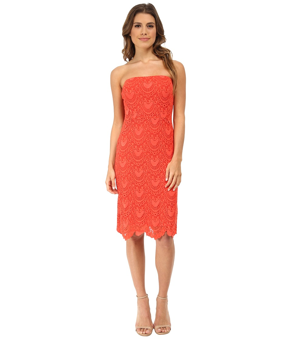 Velvet by Graham & Spencer - Pat Lace Dress (Coral) Women's Dress