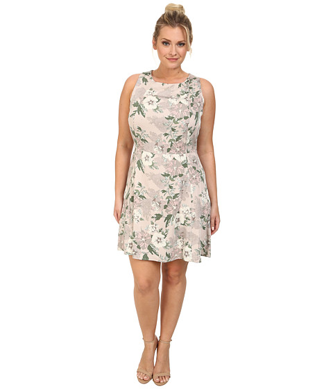BB Dakota - Plus Size Parry Dress (Nude) Women