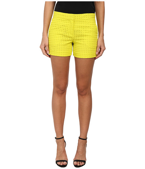 Theory - Blaynee 2 Shorts (Bright Daisy) Women