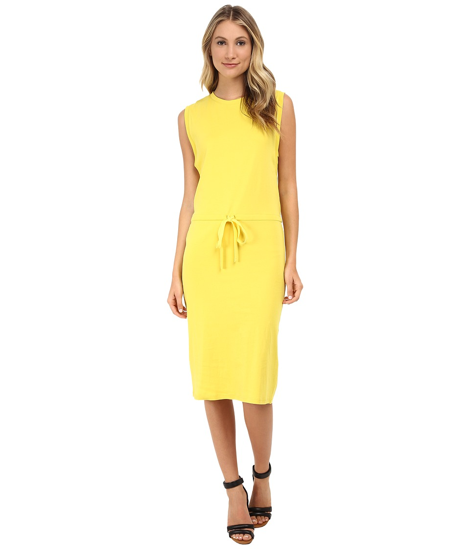Theory Caneil Dress (Daisy) Women