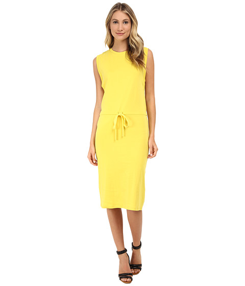 Theory - Caneil Dress (Daisy) Women