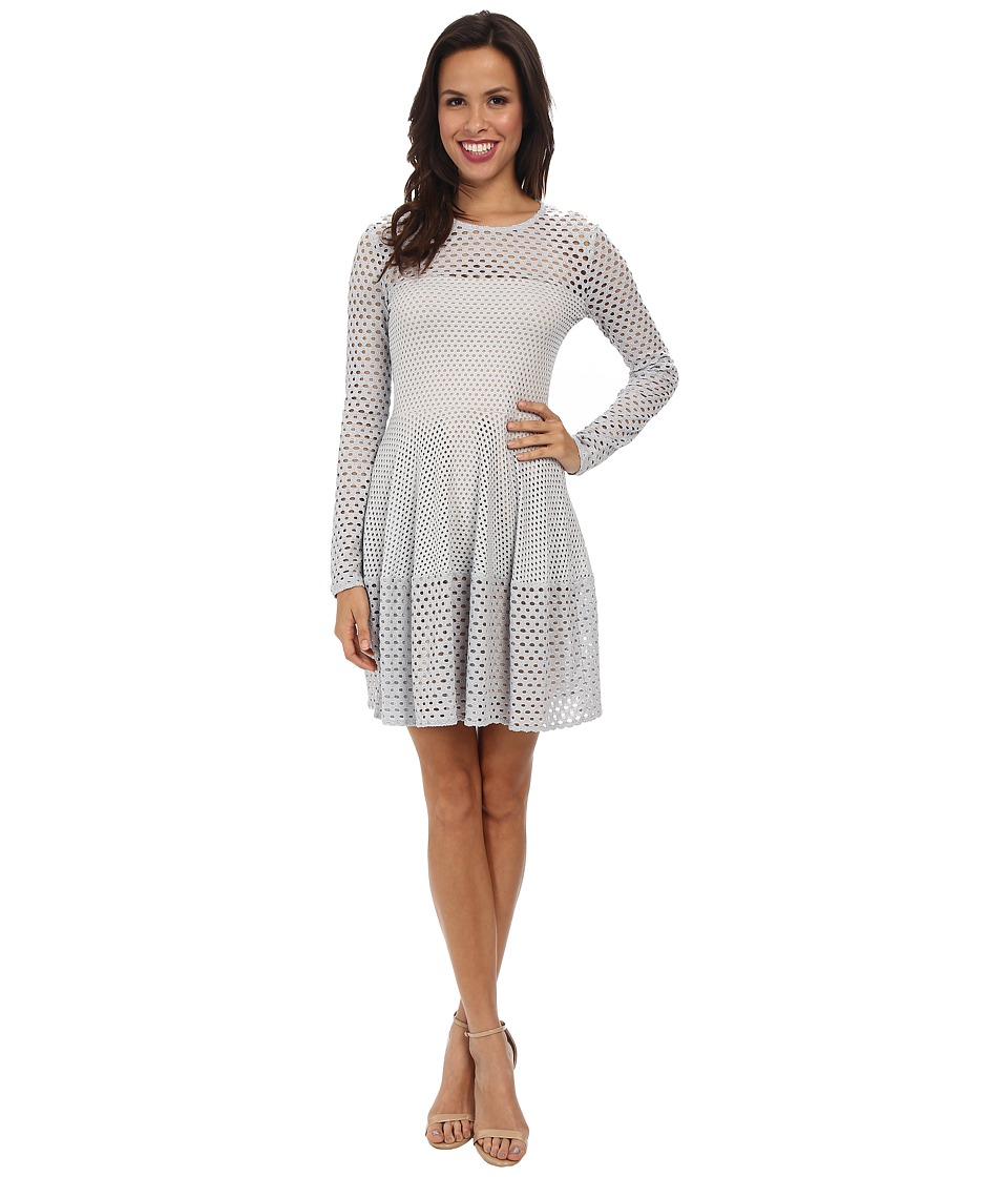 BCBGMAXAZRIA - Kyla A-Line Lace Dress with Long Sleeves (Haze) Women