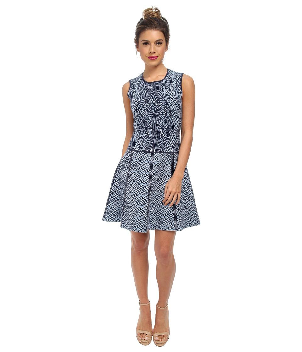 BCBGMAXAZRIA Anne Jacquard A Line Dress