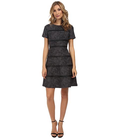Ivy & Blu Maggy Boutique - Snake Print Fit and Flare (Black/Grey) Women's Dress