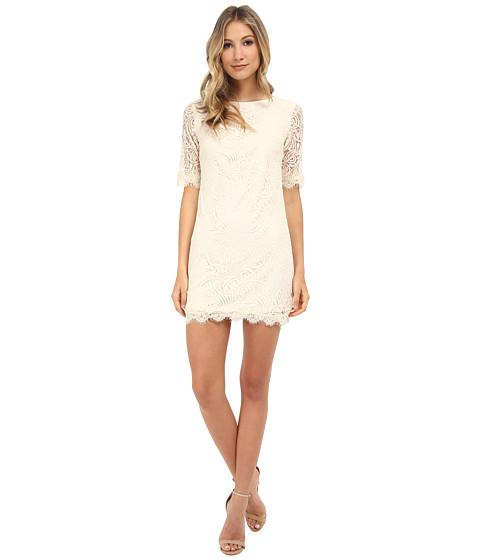 Gabriella Rocha - Anya Lace Dress (Ivory) Women's Dress