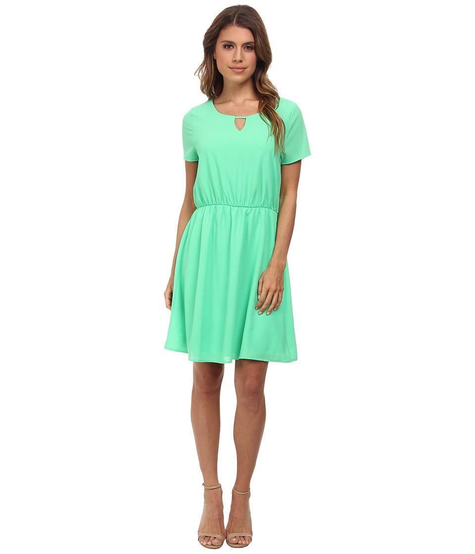 Brigitte Bailey - Jessica Dress (Spring Green) Women's Dress