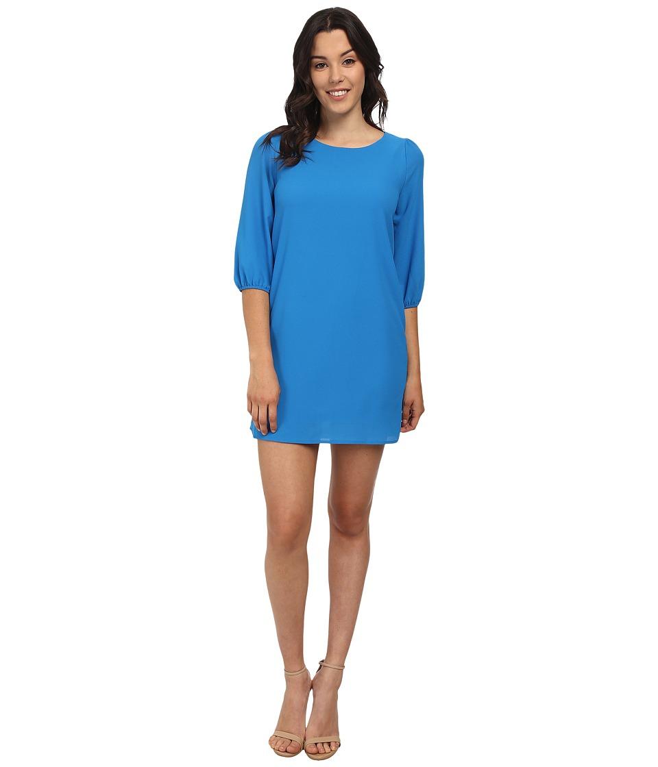 Brigitte Bailey - Wendy Dress (Blue) Women's Dress