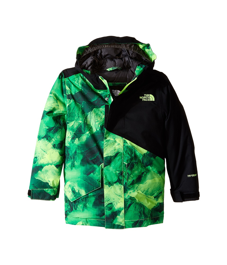 The North Face Kids - Calisto Insulated Jacket (Little Kids/Big Kids) (Photo Real Mountain Print) Boy's Coat