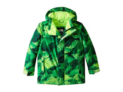 The North Face Kids - Darten Insulated Jacket (Little Kids/Big Kids) (Photo Real Mountain Print) Boy