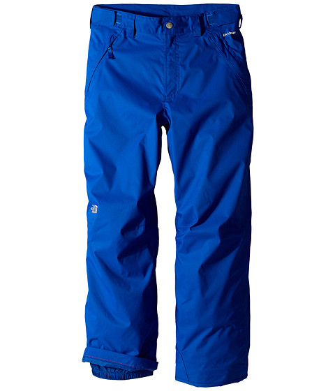 The North Face Kids - Snowquest Triclimate Pants (Little Kids/Big Kids) (Monster Blue) Boy's Outerwear