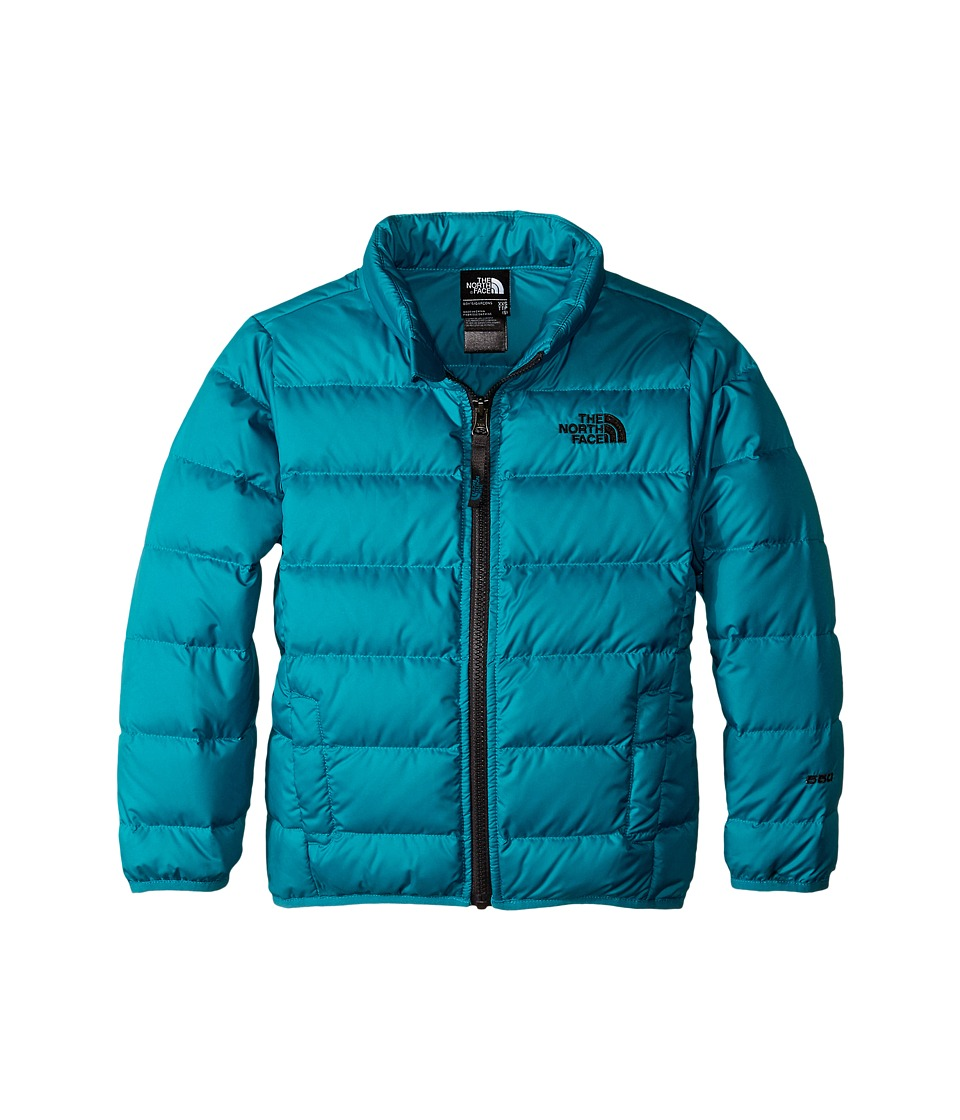 The North Face Kids - Andes Down Jacket (Little Kids/Big Kids) (Enamel Blue) Boy's Coat