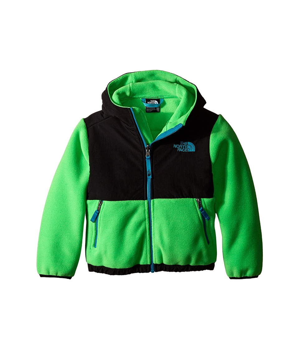The North Face Kids - Denali Hoodie (Little Kids/Big Kids) (Recycled Krypton Green) Boy's Sweatshirt