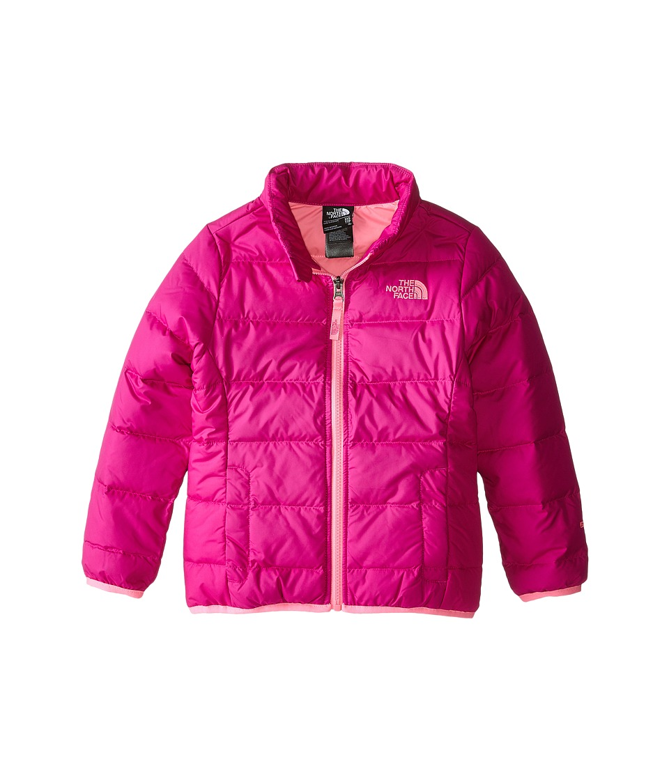 The North Face Kids - Andes Down Jacket (Little Kids/Big Kids) (Luminous Pink) Girl's Coat