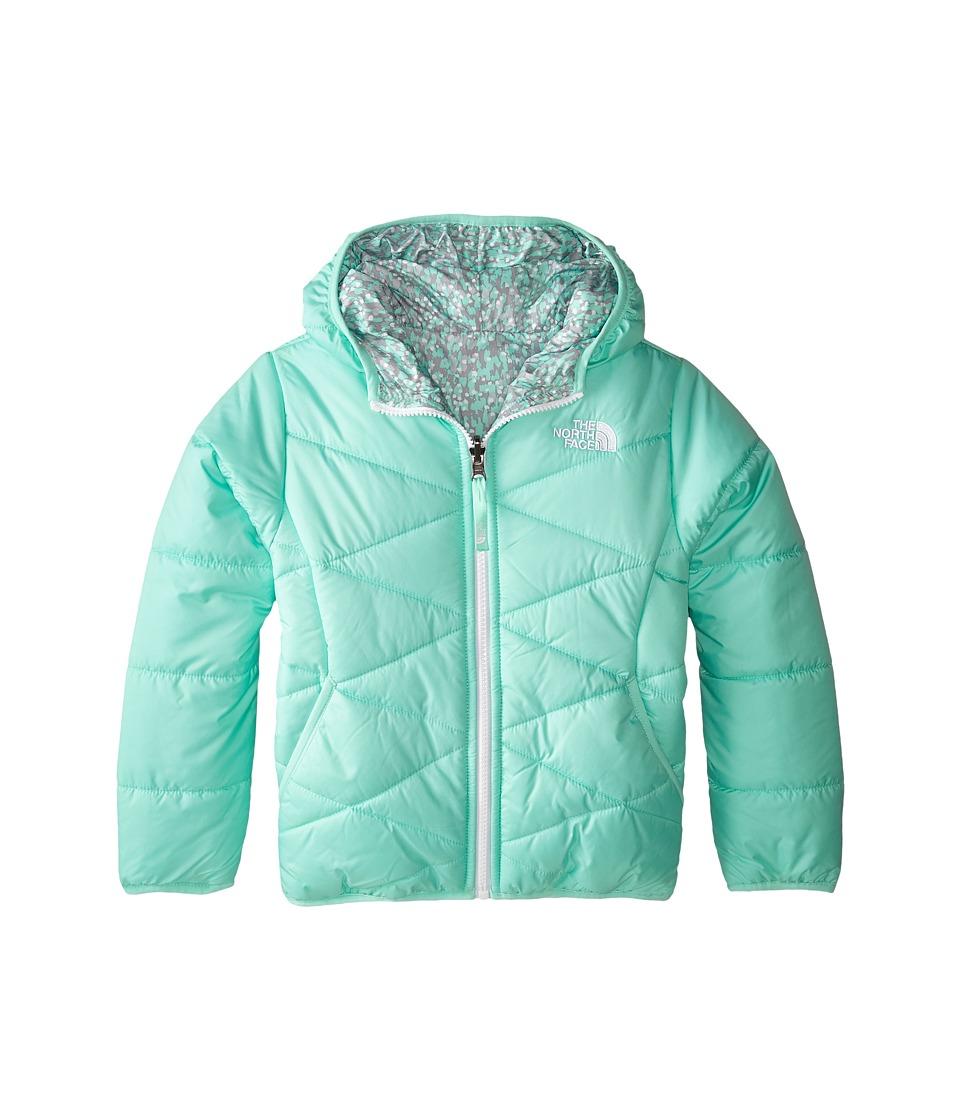 The North Face Kids - Reversible Perrito Jacket (Little Kids/Big Kids) (Surf Green) Girl's Coat