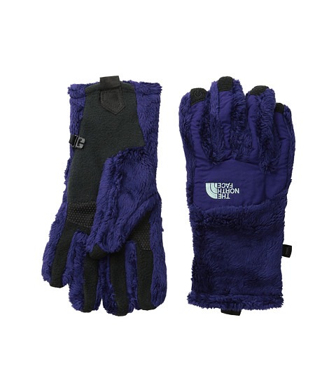 The North Face - Denali Thermal Etip Glove (Garnet Purple/Surf Green) Extreme Cold Weather Gloves