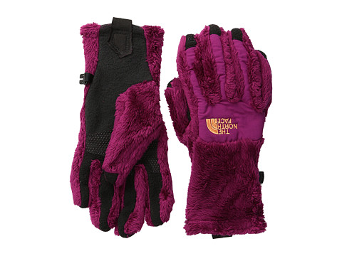 The North Face - Denali Thermal Etip Glove (Dramatic Plum/Dramatic Plum) Extreme Cold Weather Gloves