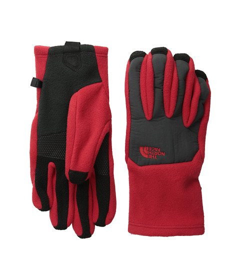 The North Face - Denali Etip Glove (TNF Red/Asphalt Grey) Extreme Cold Weather Gloves